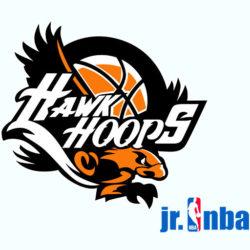 Hawk Hoops Portal